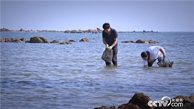 乡土:海边人的至味 5月9日