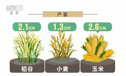 中国农业科学院:预计农产品供给总量仍将较为充足