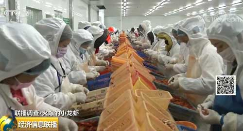 种养加工一体化 潜江小龙虾打造全产业链