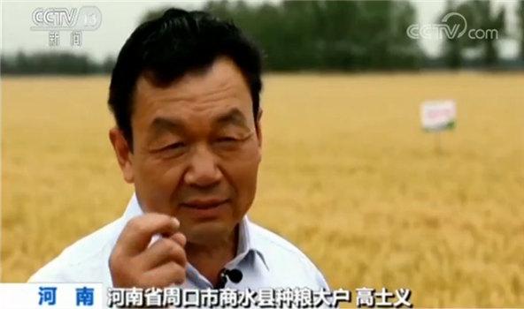 河南省周口市商水县种粮大户高士义