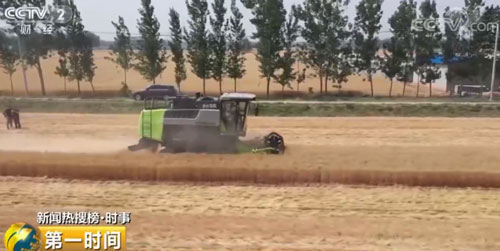 农业农村部:全国麦收进度过半 主产区机收率超98%