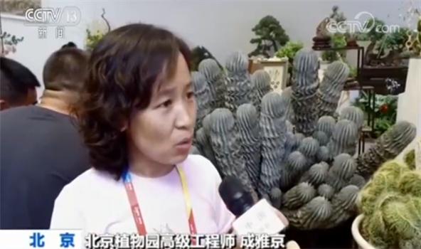 北京植物园高级工程师成雅京