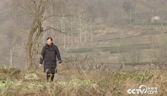 闻彬军:志智双扶,让农民有尊严地脱贫