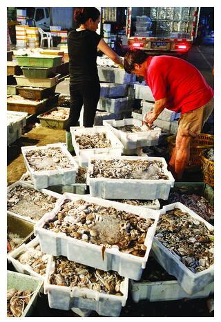 在夏商国际水产交易中心,本港海鲜大量到货。陈立新  摄