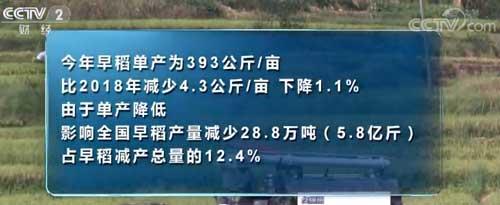 国家统计局:2019年我国早稻产量2627万吨