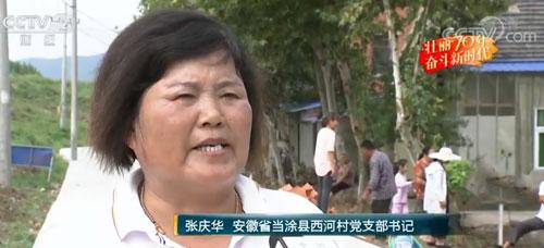 【壮丽70年 奋进新时代】安徽:旱厕改造 污水净化 西河村实现美丽蝶变