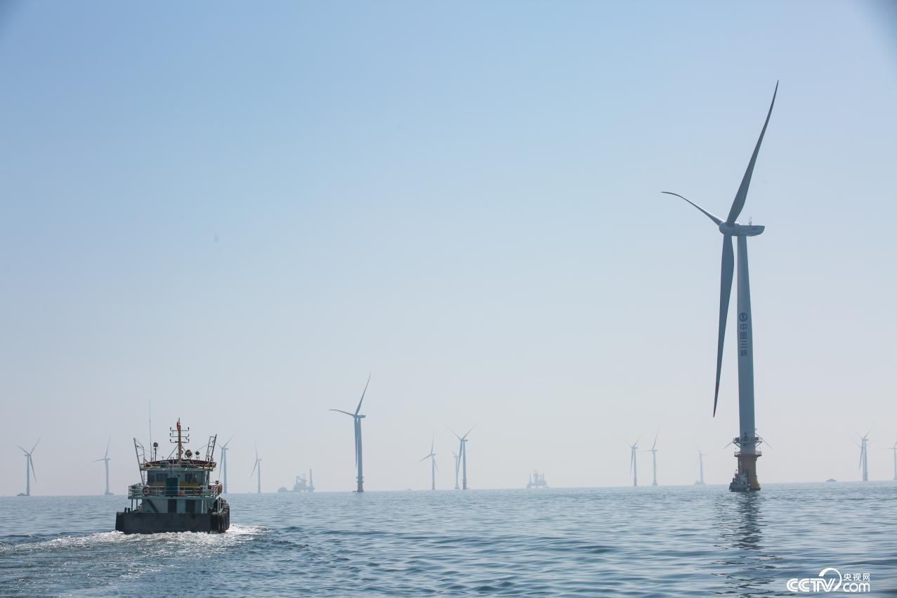 72台风机沉桩和51台风机吊装施工已经完成(李文亮 摄)