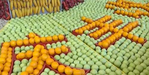 关注中国生态食品博览会 精彩悦博娱乐 生态多娇