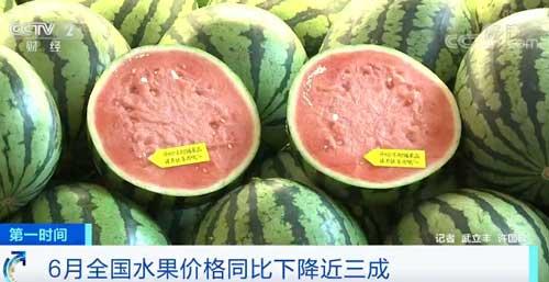 6月全国水果价格同比下降近三成 西瓜市场份额快速增加