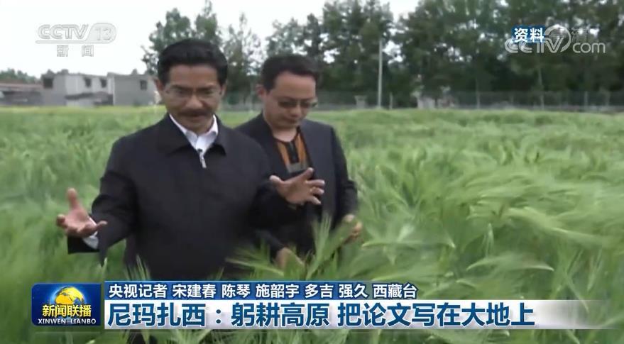 把论文写在高原大地上 助力当地粮食产业发展