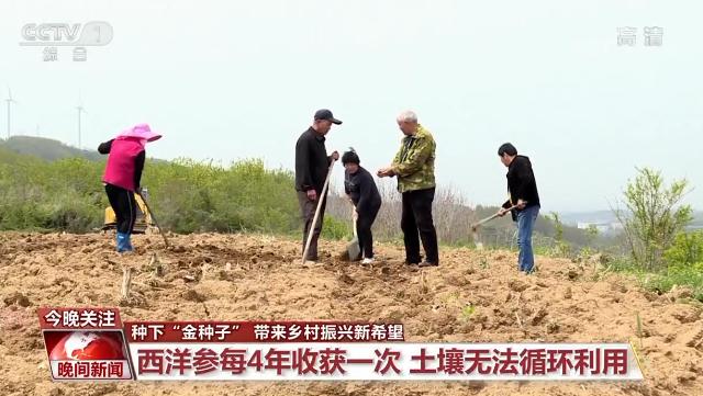 """【新时代劳动者之歌】种下""""金种子"""" 带来乡村振兴新希望"""