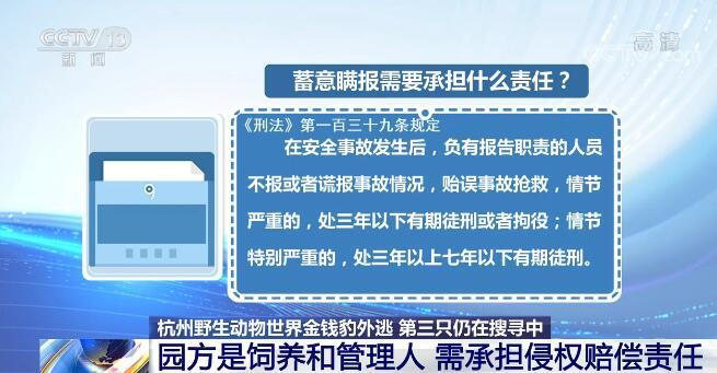 金钱豹外逃事件追踪 公司法定代表人、总经理等五人被采取刑事强制措施