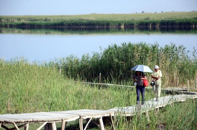 位于塔克拉玛干沙漠南缘的民丰县湿地景观。摄影/章轲