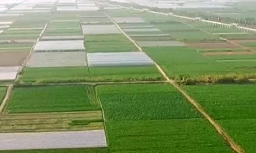 自然资源部:我国耕地面积19.179亿亩
