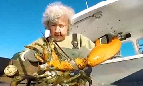无惧高龄 101岁美国奶奶坚持热爱出海捕虾